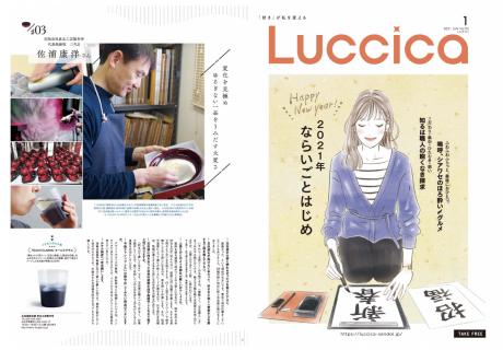luccica-玉虫塗